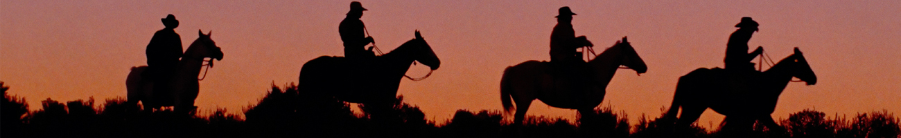 Horseback Riding Louisiana Bed Breakfast